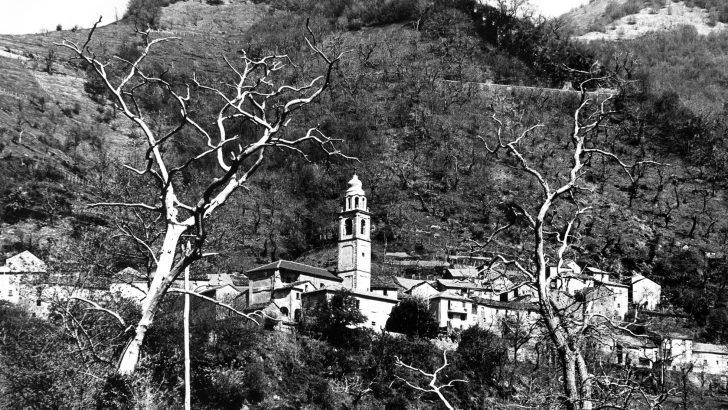 Terre di montagna: il caso Pracchiola, una comunità prospera nel Medioevo