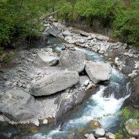 """""""Adotta un torrente"""": le associazioni chiamate a monitorare i corsi d'acqua"""