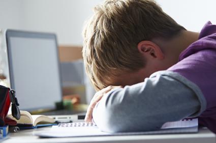 Cyberbullismo: educare per prevenire gli abusi
