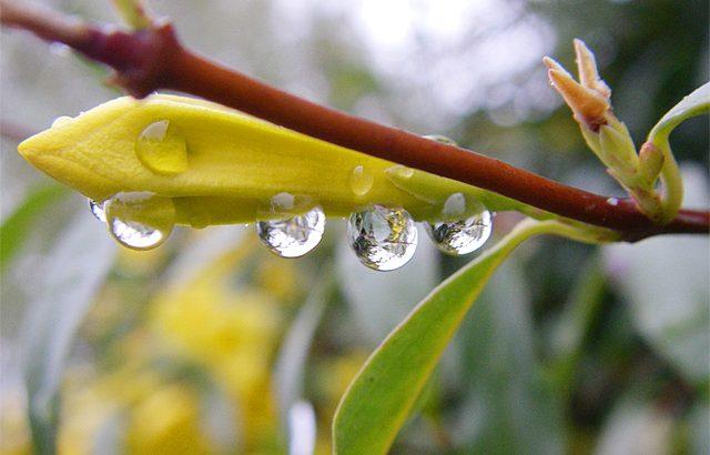 Dal sereno alle nubi e alla pioggia