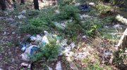 """A Licciana Nardi, telecamere trappola per """"catturare"""" chi abbandona i rifiuti"""