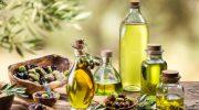 Bene la raccolta delle olive come qualità e quantità