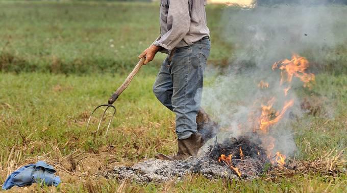 Anticipato il divieto di accensione di fuochi nei boschi e aree contigue