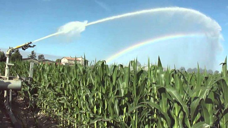 Lunigiana. trovato l'accordo con il Consorzio di Bonifica per l'irrigazione agricola