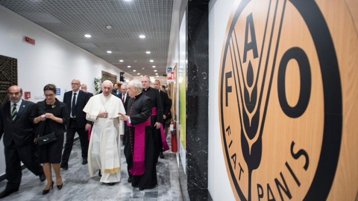 """Papa Francesco alla Fao: """"La fame non è una malattia incurabile"""""""