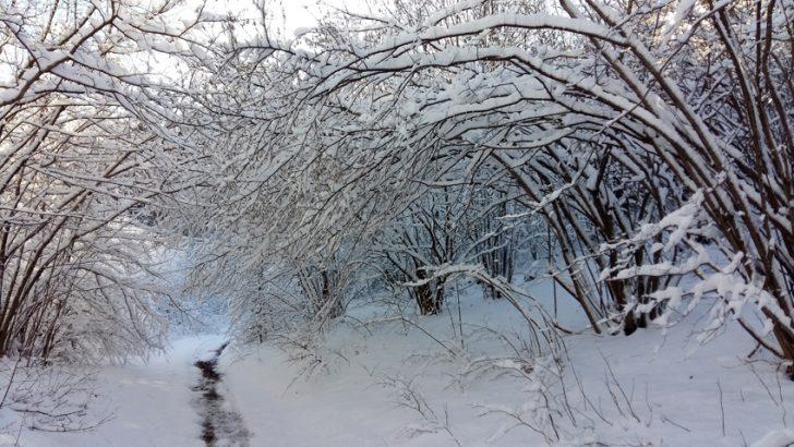 Dalla siccità alla neve nel giro di pochi giorni
