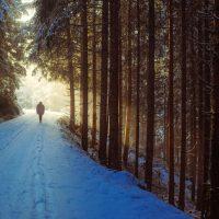 Fioccatona novembrina: 70 cm di neve sul crinale appenninico