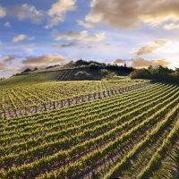 Garfagnana e Lunigiana scommettono sullo sviluppo dell'economia rurale