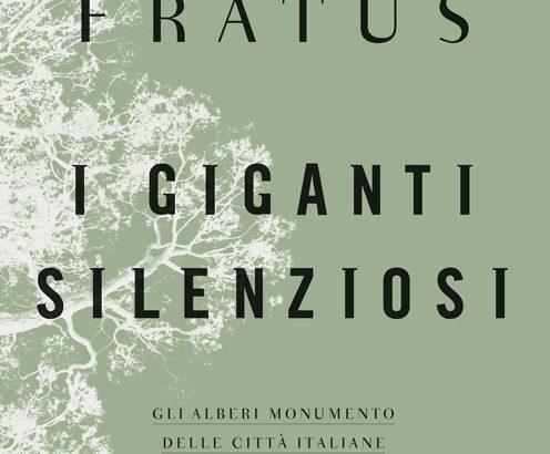 Giganti silenziosi: gli alberi monumento delle città italiane