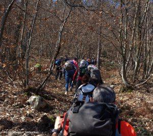 I componenti del Mangia Trekking in cammino nei boschi della Lunigiana