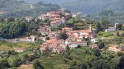 A San Terenzo Monti torna la coltivazione del grano