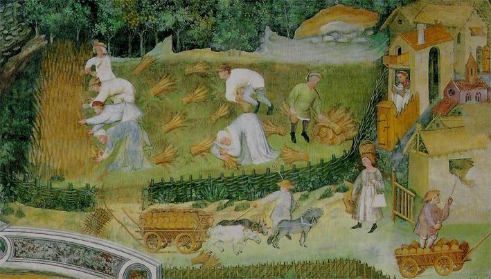 Dove erano foreste, brughiere e paludi ritornarono i campi. La rinascita del paesaggio agricolo