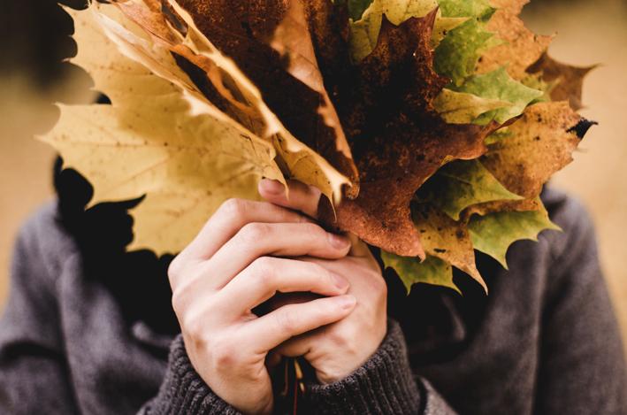 Novembre, prima metà umida e mite