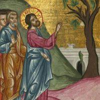 Il Signore Gesù ha pietà del suo popolo