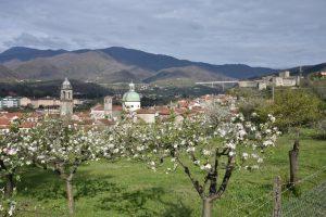 Parte del centro storico di Pontremoli visto dalla Costa di Monte Galletto con gli alberi da frutto fioriti