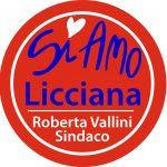 Il simbolo della lista della Vallini