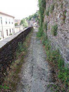 Un'immagine della condizione in cui versa la stradina che corre a monte della strada principale (ex statale) in località Terrarossa