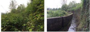 A Filattiera i lavori di manutenzione ordinaria del canale scolmatore Scorrevoli. (a sinistra la situazione prima dei lavori e a destra a lavori conclusi)