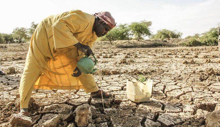Fame nel mondo: un triste record negativo per l'Africa sub-sahariana