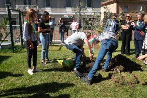 I ragazzi piantano un ulivo nel giardino della scuola