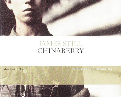 "In ""Chinaberry"" la vita complessa negli USA di James Still"