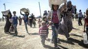 Sono drammatiche le notizie dal nord-est della Siria