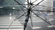 Sole, pioggia e funghi di ottobre