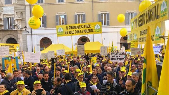 La Coldiretti in piazza a Roma per l'allarme cinghiali