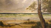 In mostra alberi e marine di Costantino Paolicchi