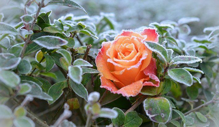 Clima freddo nelle valli, mite sui rilievi
