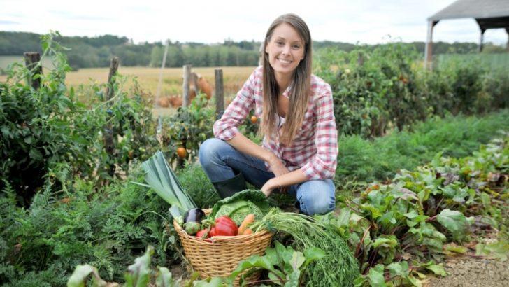 Fondi per sostenere i giovani agricoltori