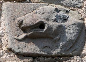 Il profilo del lupo, simbolo dei Lueti, scolpito su una pietra sulla facciata