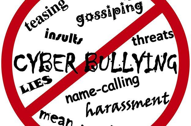 Didattica a distanza e cyberbullismo