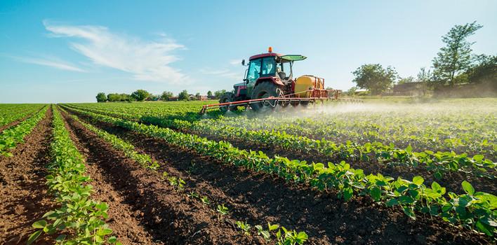 Agricoltura: dalla Regione bando da 3 milioni di euro