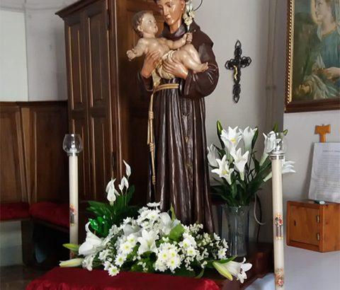 Festa di Sant'Antonio da Padova a Vico Canneto