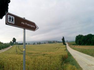 41francigena