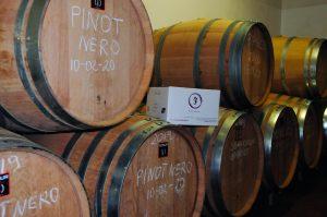 """Alcune botti del """"Podere Fedespina"""" con il vino in maturazione"""