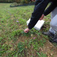 Fivizzano: iniziative per il rilancio del territorio