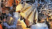 Fine della quiete novembrina, è arrivato l'inverno