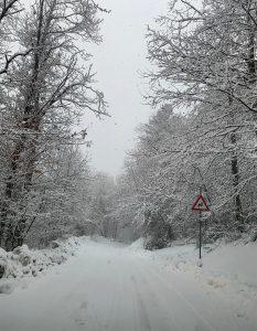La strada per la Madonna del Monte a Mulazzo